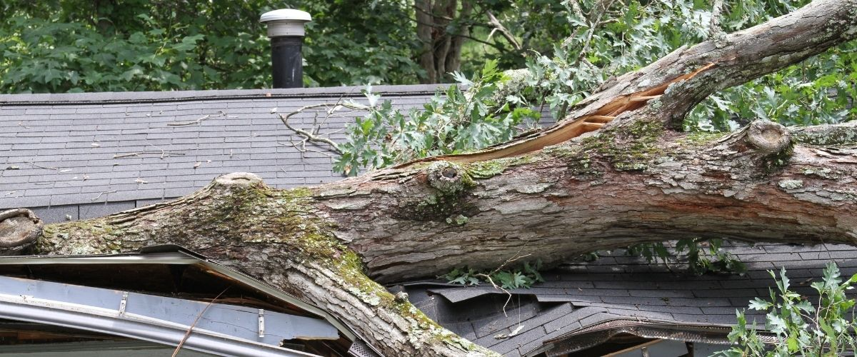 storm damage roof repair maryland